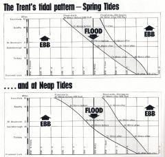 Trent Tides