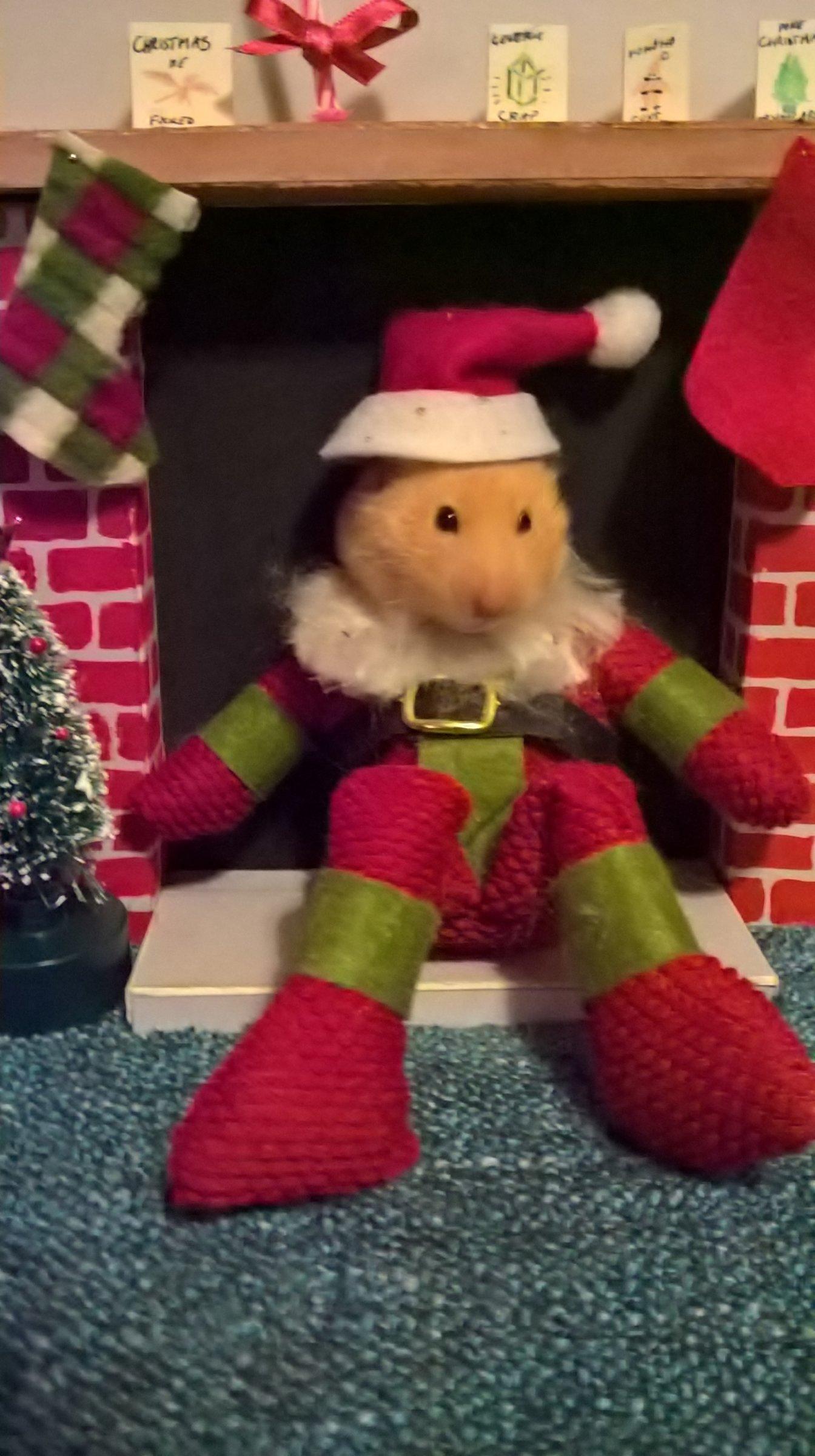 Custom Christmas cards - The Virtual Pub - Canal World