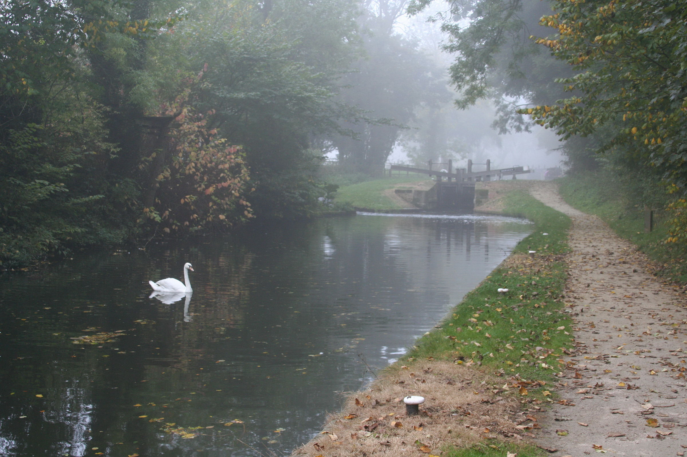 1007 Chesterfield Canal 17th October 2005.jpg